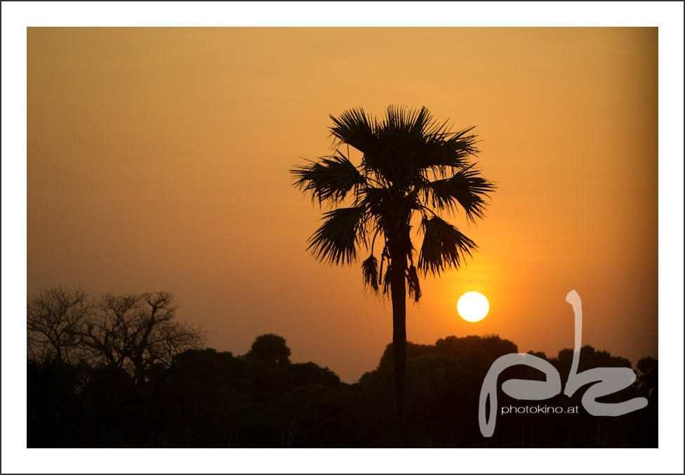 photokino_burkina_faso_tag11-112
