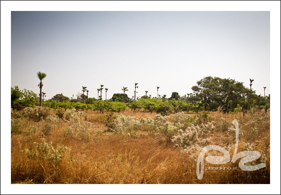 photokino_burkina_faso_tag11-3