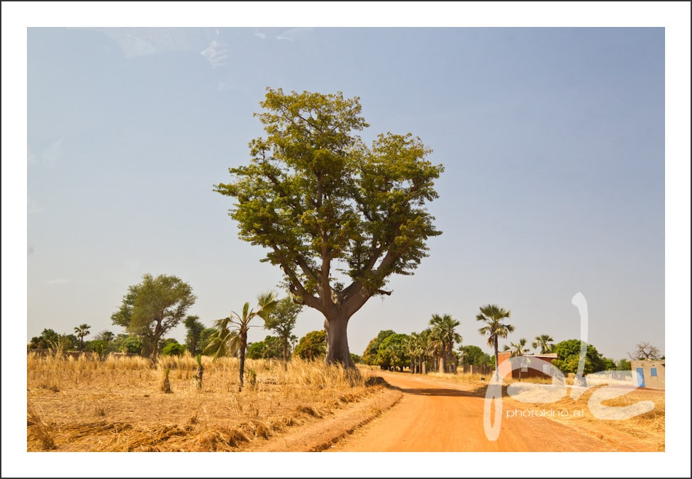 photokino_burkina_faso_tag11-8