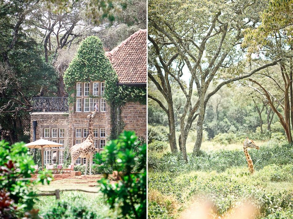 afrika-kenia-tansania-sansibar-safari-011