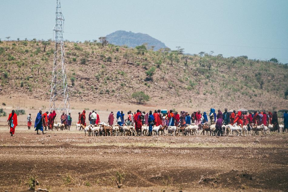 afrika-kenia-tansania-sansibar-safari-056