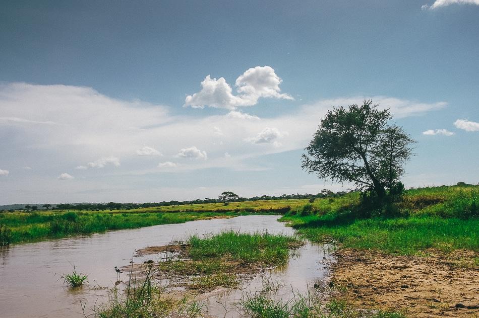 afrika-kenia-tansania-sansibar-safari-064