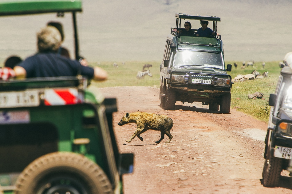 afrika-kenia-tansania-sansibar-safari-082