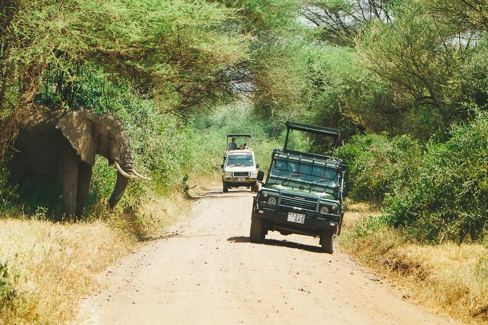 afrika-kenia-tansania-sansibar-safari-103